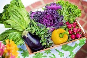 Obst und Gemüse in Schubkarre